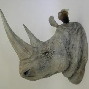 White Rhino Head [24x41x36]