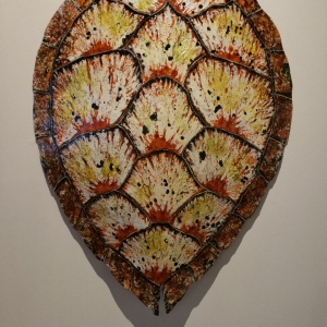 Sea Turtle Shell Design