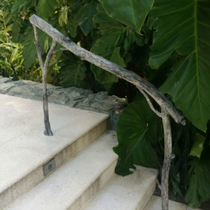 Branch Hand Railings