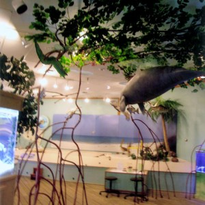 Mangrove Tree Sculpture