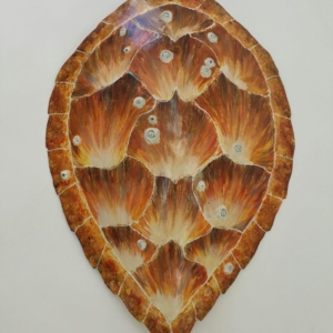 Sea Turtle Shell Sculpture
