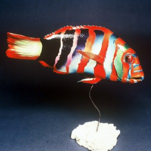 Harlequin Tuskfish Sculpture [approx. 16in]