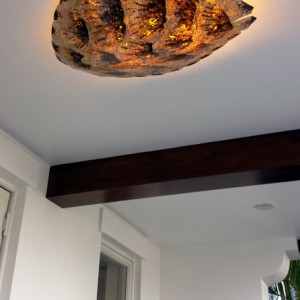 Sea Turtle Shell Ceiling Light Fixture