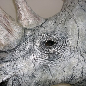 White Rhino Head Detail
